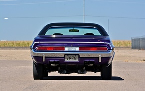 Picture Dodge, Challenger, 1970, old, hemi, muscle car.