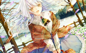 Picture girl, basket, white hair