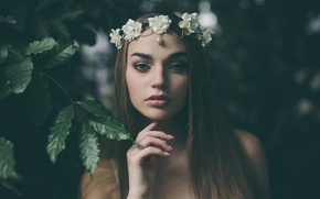 Picture leaves, girl, flowers, branches, brunette, decoration