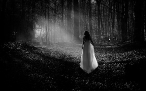 Picture forest, girl, dress, b & W photo