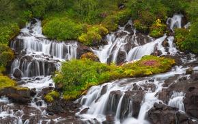 Picture waterfalls, cascade, Iceland, Iceland, Hraunfossar, Hraunfossar