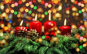 Picture branches, holiday, new year, Christmas, spruce, candles, tree, needles, bumps, bokeh