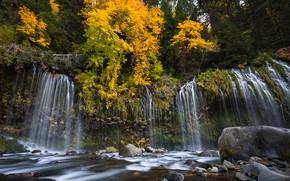 Wallpaper autumn, forest, trees, river, stones, waterfall, CA, cascade, California, Sacramento River, Mossbrae Falls, Dunsmuir, Sacramento ...