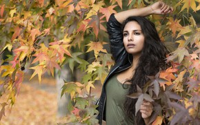 Picture autumn, face, pose, model, hair, Joanna