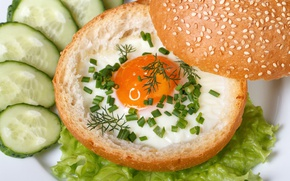 Picture scrambled eggs, cucumbers, bun