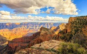 Picture AZ, USA, Arizona, Grand Canyon National Park, Coconino
