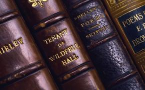 Picture books, folio, roots