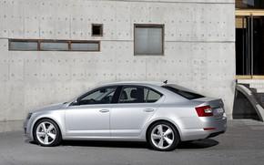 Picture wall, Parking, sedan, Skoda, 2013, Skoda, Octavia, gray-silver