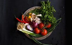 Picture bow, pepper, vegetables, tomato, parsley, garlic