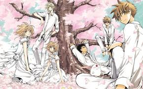 Picture anime, art, characters, Tsubasa Reservoir Chronicles