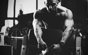 Picture pose, black & white, athlete, muscle, muscle, rod, black and white, simulators, gym, bodybuilder, biceps, …