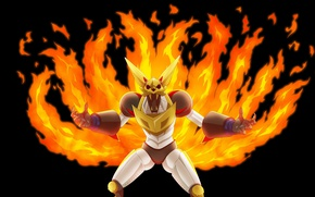 Picture Fox, fire, flame, game, robot, Naruto, mecha, fox, anime, asian, manga, kyuubi, japanese, Orochimaru, Naruto …