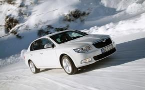 Picture white, snow, movement, sedan, 2009, 4x4, Skoda, Skoda, winter road, four-door, Superb