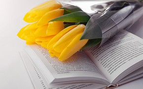 Picture yellow, tulips, book