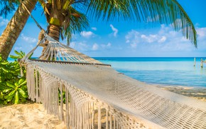 Picture clouds, landscape, nature, The sky, Sea, Beach, Summer, Tropics, Palm trees, Hammock, blue water