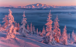 Picture winter, trees, landscape, sunset, mountains, nature, the evening, ate, slope, snow, Vladimir Ryabkov, Kolyma