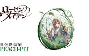 Picture grass, doll, white background, lake, art, different eyes, Rozen maiden, Rozen Maiden, suiseiseki, peach-pit, stems …