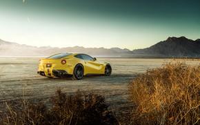 Picture design, desert, the bushes, yellow, cool, The Ferrari F12