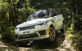 Picture road, forest, grass, trees, puddle, dirt, track, Land Rover, black and white, shrub, Range Rover …