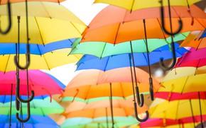 Picture umbrella, paint, texture, umbrella