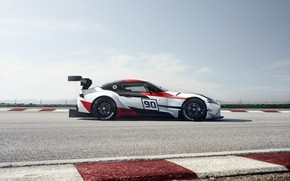 Picture the sky, movement, vegetation, coupe, track, the fence, Toyota, 2018, wing, GR Supra Racing Concept