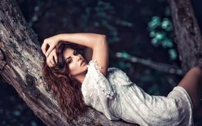 Picture look, pose, tree, model, hair, hands, dress, FotoMėgėjas, Iveta Danieliūtė