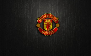 Picture wallpaper, sport, logo, football, Manchester United