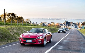 Picture road, movement, convertible, cars, Fiat, cabriolet, metallic, Spider-Europe