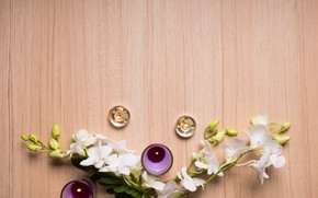 Picture flowers, candles, orchids, SRA