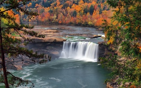 Picture autumn, forest, trees, nature, river, waterfall, USA