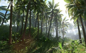Picture nature, palm trees, vegetation, Star Wars Battlefront, Scarif Vegetation