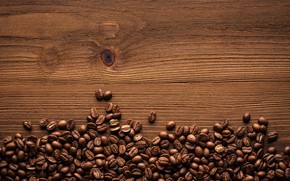 Wallpaper coffee, coffee, tree