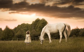 Picture horse, meadow, girl