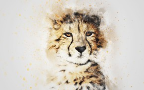 Wallpaper look, face, picture, watercolor, leopard