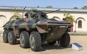 Wallpaper Luchs A2, combat, Lynx, reconnaissance vehicle, Spahpanzer 2