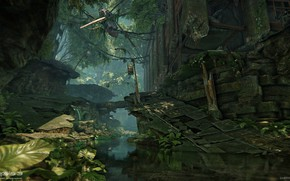 Picture rocks, channel, helicopter, Financial District, Crysis 3 MP