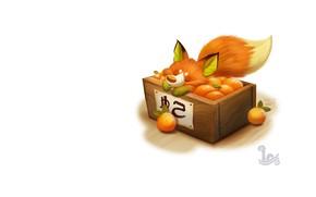 Picture oranges, art, box, Fox, tangerines, children's, Piper Thibodeau, Daily Painting 1727# Kitrus Fruit