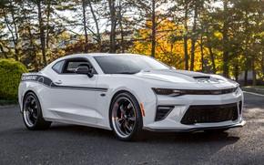 Picture Chevrolet, Camaro, 2018, YenkoSC, Stage II, SVE