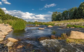 Picture greens, summer, the sky, grass, the sun, clouds, trees, stream, stones, Germany, Parum