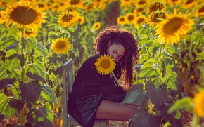 Wallpaper chair, girl, field, sunflowers, mood