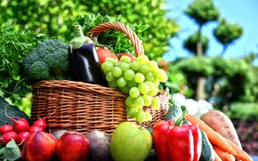 Picture greens, background, basket, Apple, grapes, eggplant, pepper, fruit, vegetables, tomatoes, carrots, cabbage, bokeh, cucumbers, nectarine, …