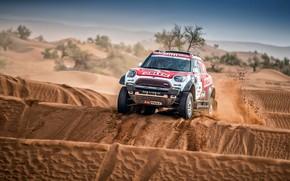 Picture Sand, Auto, Mini, Sport, Machine, Race, Rally, SUV, Rally, Dune, X-Raid Team, MINI Cooper, X-Raid, …
