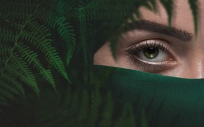Picture girl, green, eyes, fern, eyebrow