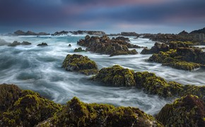 Picture the ocean, coast, CA, Pacific Ocean, California, The Pacific ocean, Pacific Grove, Monterey Bay, Pacific …