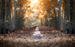 Picture autumn, nature, boy