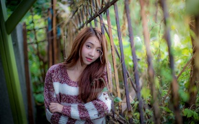 Picture look, girl, hair, Asian, sweater