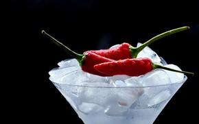 Picture ice, pepper, Chile