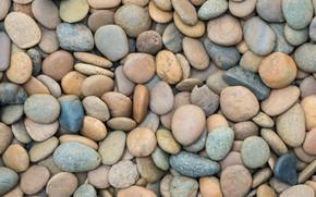 Wallpaper beach, pebbles, stones, background, white, white, beach, texture, marine, sea, pebbles
