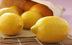 Picture lemons, Mat, paper bag