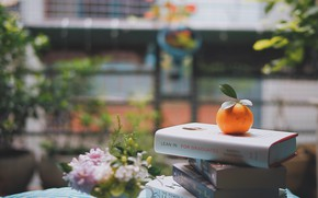 Picture flowers, street, books, orange